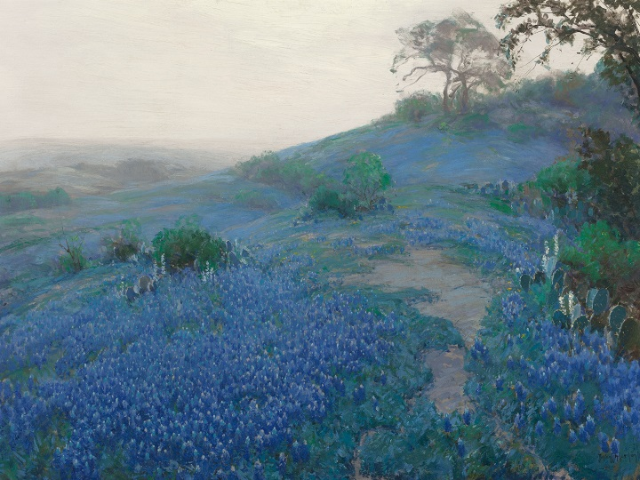 Blue Bonnet Field, Early Morning, San Antonio Texas (1914)